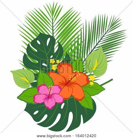 Tropical plants and flowers arrangement. Vector illustration.
