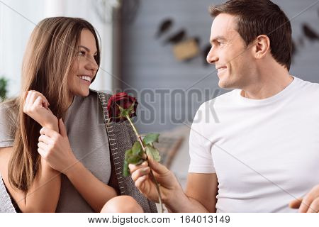 I love you. Cheerful pleasant nice man holding a rose and giving it to his girlfriend while expressing his love