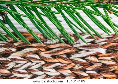 Knitted color-blend fabric  combined with milky white corduroy background with evergreen twig. Macro view