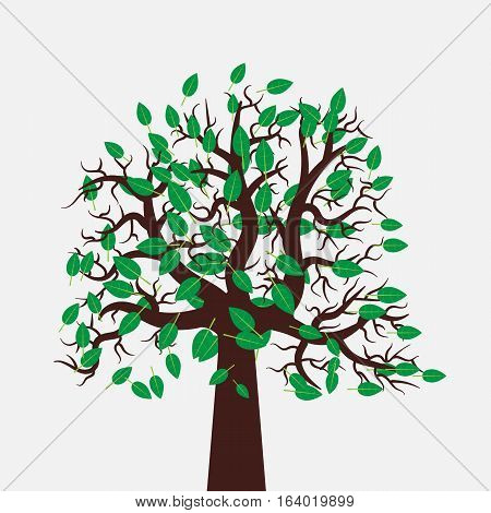 Vector tree illustration in flat design. Green leaves. Beautiful and stylish image for eco-oriented design.