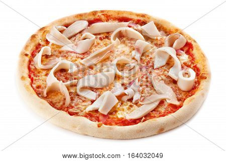 Pizza with squid on a  white background