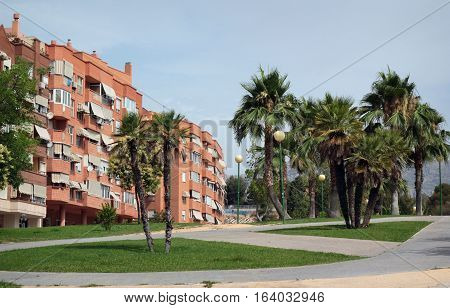 Modern building and palm trees on street resort town Benidorm in summer day. Province of Alicante Spain.