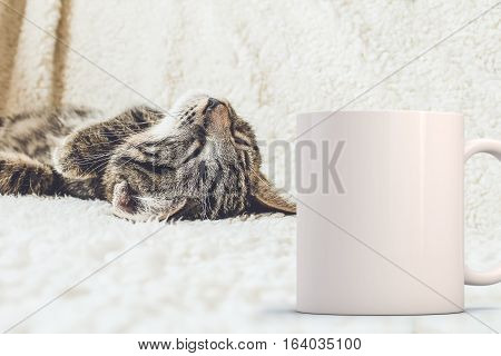 Mockup Styled Stock Product Image white mug that you can add your custom design/quote to. Mug is next to a cat laying on its back.