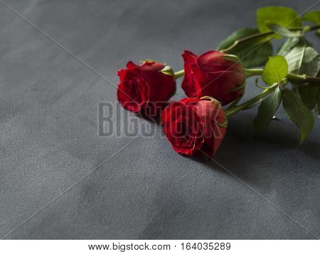 Red roses in a bunch on a grey background with space for text