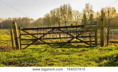 Backlit image of an old and crooked wooden gate near a nature area. The gate is closed and and locked with a chain and padlock.