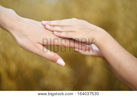human hands close up, grown up and child