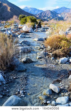 Creek with flowing water from mountain snowmelt surrounded by sage plants taken at the desert in Whitewater, CA