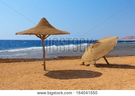 Umbrellas on the deserted beach. Red sea. Dahab Egypt.