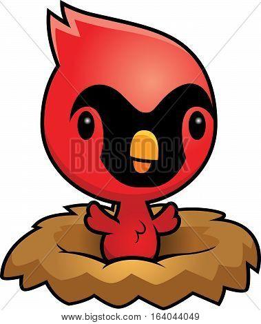 Cartoon Cardinal Nest