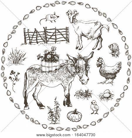 Set of hand drawn farm animals, vector illustration