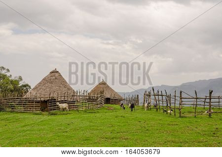 Traditional thatch, clay and wood houses of sheep farmer in highlands of Cameroon, Africa.