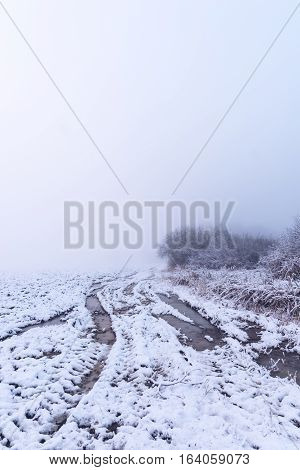 Very Rutted Track In Foggy Snowy Morning