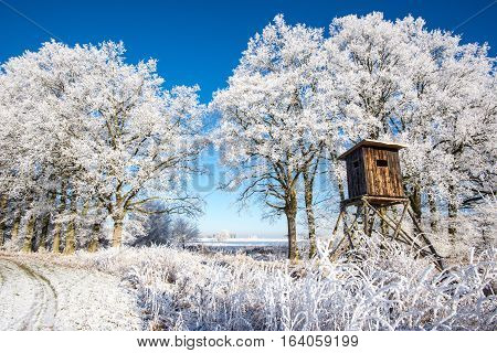 Wooden Hunting Hideout In Front Of Trees Covered By Frost