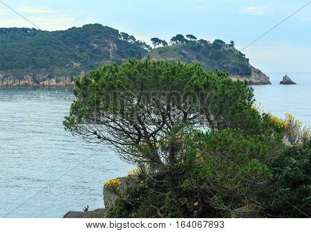 Summer Sea Coastline, Costa Brava, Spain.