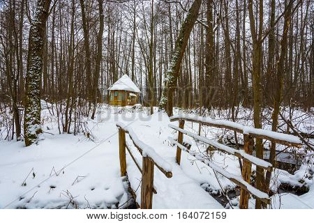 Holy Spring Of Great Martyr Paraskeva In The Winter Woods.