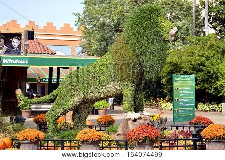 Busch Gardens Tampa Florida USA - October 27 2016 : Topiary lion at the entrance to Busch Gardens Tampa