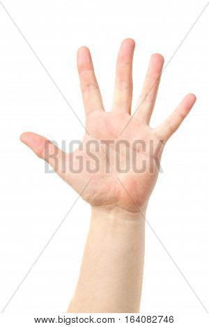 Man Hand Sign Isolated On White Background. Men's Hand.