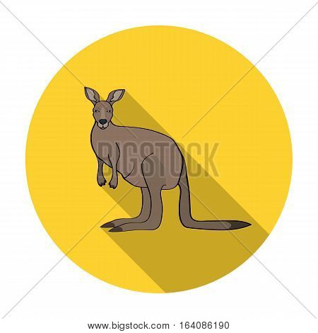 Kangaroo icon in flat design isolated on white background. Australia symbol stock vector illustration.