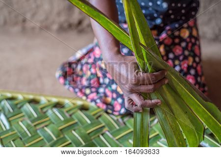 Woman hands weaving green coconut leaves pattern background