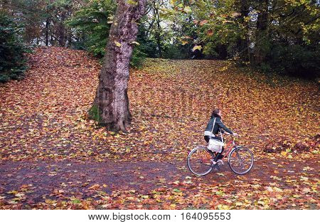 London, UK - November 19, 2016: Young woman cycles in the woods in Ghent, Belgium
