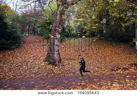 London, UK - November 19, 2016: Man in track suit  jogs in woods during day time in Ghent, Belgium
