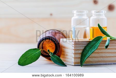 Closeup bottles of sage essential oil for aromatherapy with sage leaves on wooden background. Selective focus shallow depth of field.