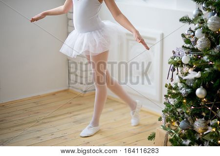 Young Ballet Dancer Learning The Lesson