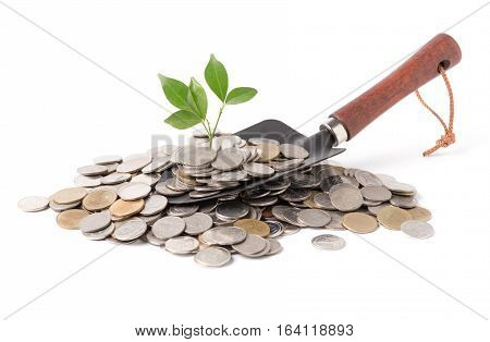 Plant Growing Out Of Silver Coins On Gardening Trowel Isolated