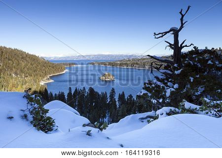 Emerald Bay, Lake Tahoe In Winter With Dead Tree And Island View. Snow In The Foreground Completes T