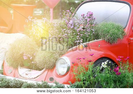 sweet dreamy Old car and fields of flowers with light flare
