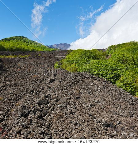 Congealed Black Lava on the Slopes of Mount Etna in Sicily