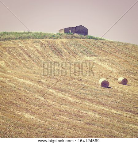 Landscape of Sicily with Many Hay Bales at Sunset Instagram Effect