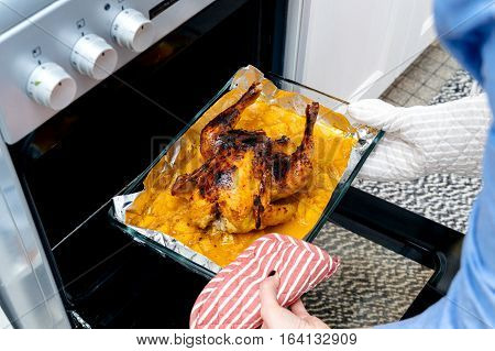 Delicious roasted chicken out of the oven by woman hands wearing protection glove made under special Swedish recipe with ginger oranges apples and other organic food ingredients - ready to be served