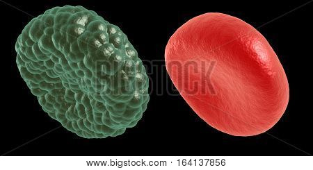 Green illness and red blood cell. 3d render on black. Healthcare and medical concept.