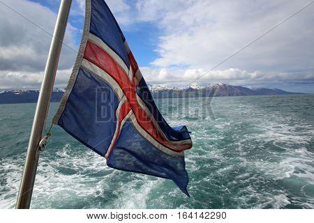 Icelandic Flag on a Boat near Husavik. Iceland