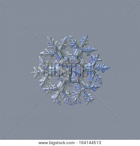 Snowflake isolated on light grey background: macro photo of real snow crystal, captured on glass. This is large stellar dendrite snowflake, slightly molten, with massive arms and big central hexagon.