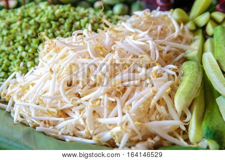 Closeup to white Bean Sprouts vegetable for served