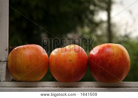 Red apples lying on the window sill poster