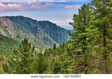 Siberian coniferous taiga in foothills. Eastern Sayan Mountains. Russia