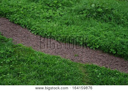 green grass with gravel diagonal path, abstact photo