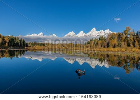 a reflection of the snow capped Tetons in fall from Schwabachers landing
