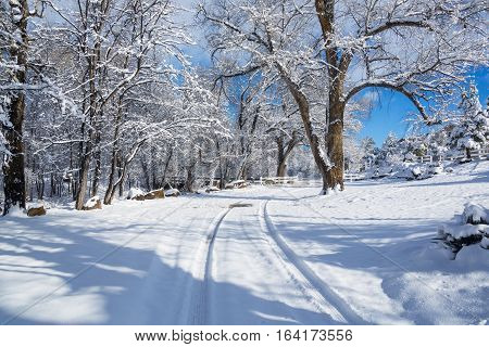 Country Road in the Winter 01 - A winter and snowy rural scene featuring tire tracks leading up through a scenic country wonderland. The background features a slight hill, trees, and a bright blue sky with some cloud cover.