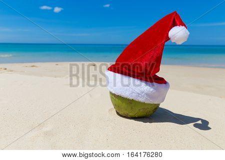 Coconut In Santa Christmas Hat Sand Tropical Beach