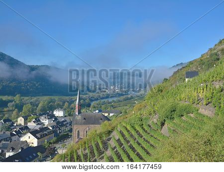 idyllic Wine Village of Valwig near Cochem in Mosel Valley,Rhineland-Palatinate,Germany