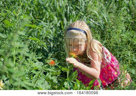 Beautiful school age girl smelling wildflowers in field