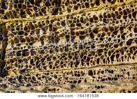 Elgol honeycomb. Beach of Isle of Skye Scotland United Kingdom