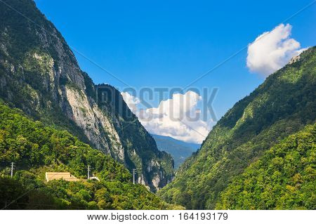 Mountain forest landscape with beautiful cloudy sky