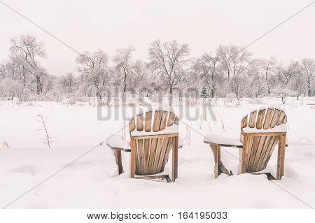 Winter snowy landscape in Montreal, Quebec (Botanical Garden)
