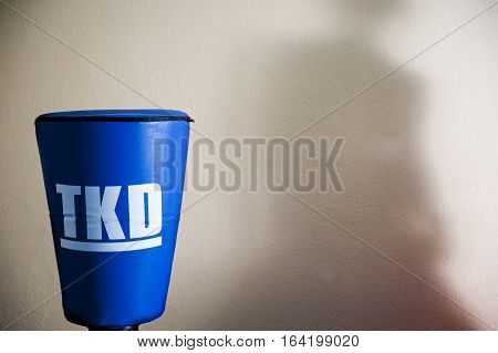 Taekwondo or kick boxing  bag, blue with white letters, and a shadow in the background.