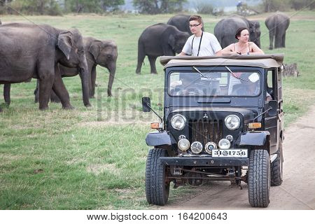 MINNERIYA, SRI LANKA. July 21, 2016: Minneriya National Park. A jeep carrying many tourists visiting the famous national park of Sri Lanka. A car goes into the park in search of wild animals. Elephants in the background.